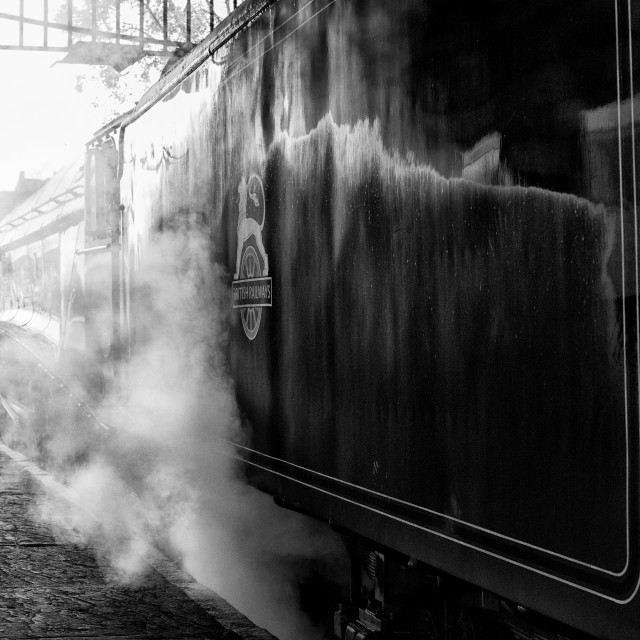 """Steam train at Pickering station"" stock image"
