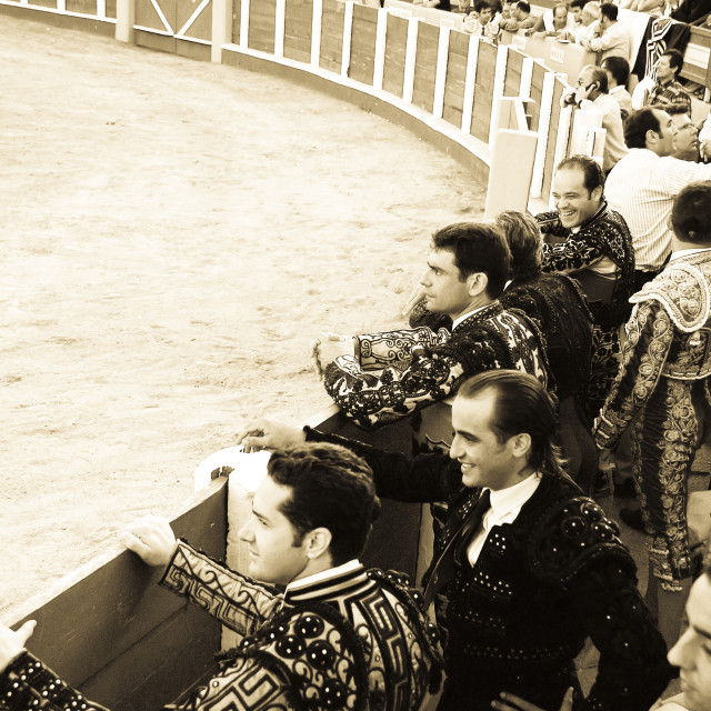 """Banderillero and matadors watching bullfight"" stock image"