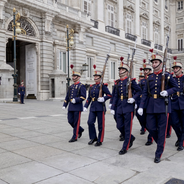 """Changing of the Guard ceremony"" stock image"
