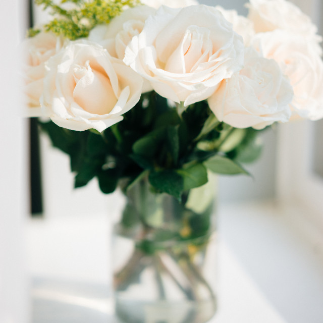 """Bouquet of white pastel roses"" stock image"