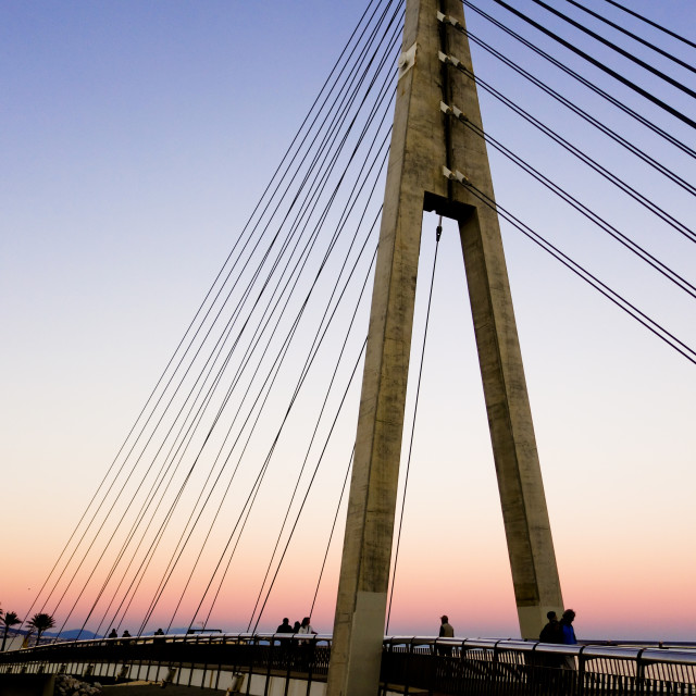 """""""Cable bridge at the river mouth"""" stock image"""