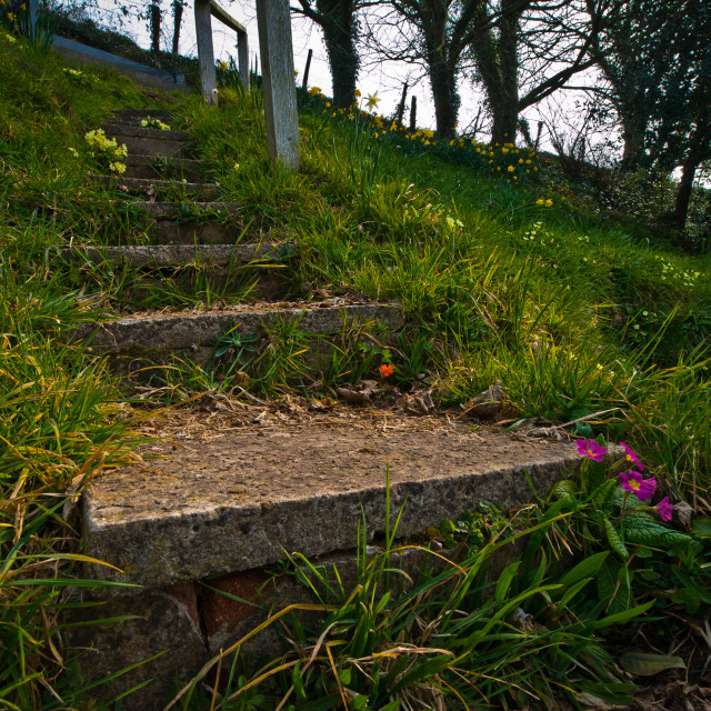 """Steps"" stock image"