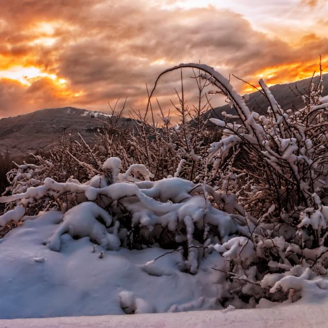 """Sunrise over snow"" stock image"