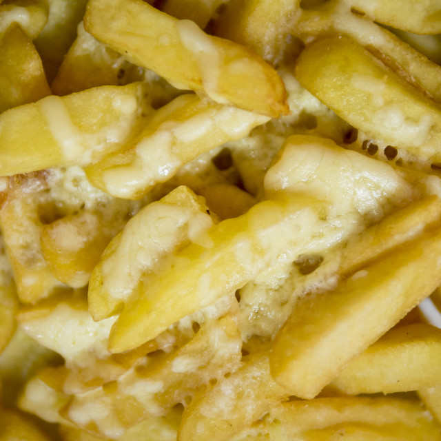 """""""Cheesy Chips or Cheese fries"""" stock image"""