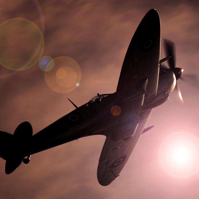 """""""Spitfire MK356"""" stock image"""