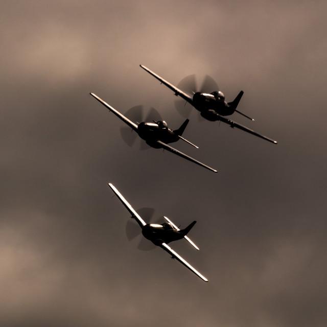 """P-51 Mustang Trio"" stock image"