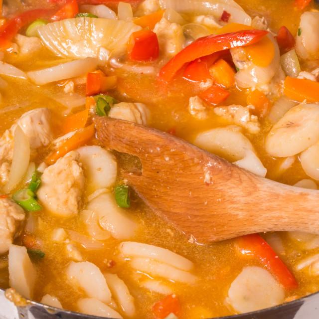 """""""Chicken stew 2"""" stock image"""