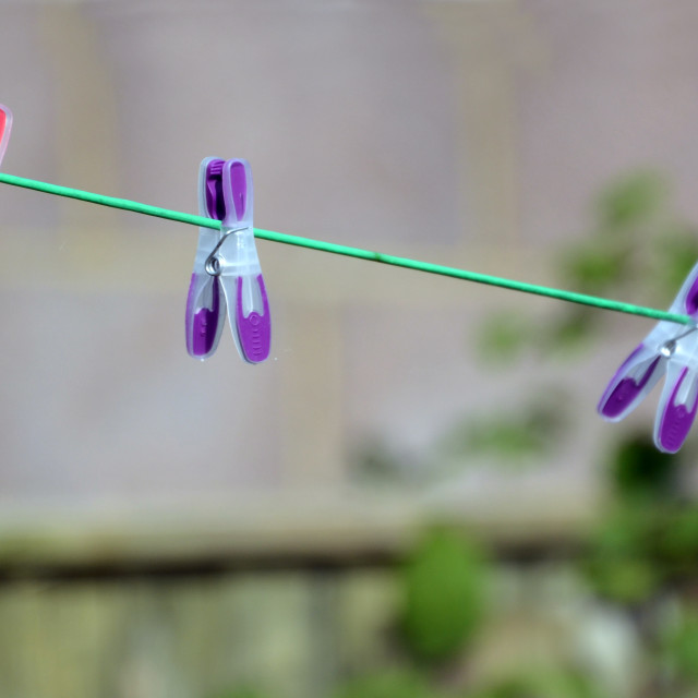 """Pegs on a Line"" stock image"