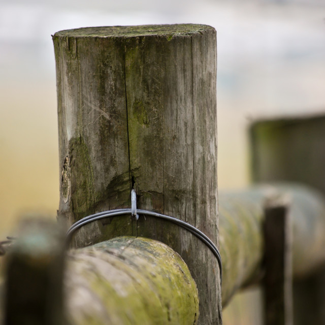 """Fence Post"" stock image"