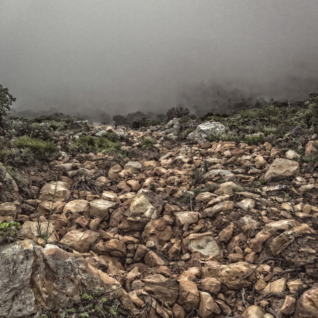"""""""A rockfall on a mountain slope."""" stock image"""