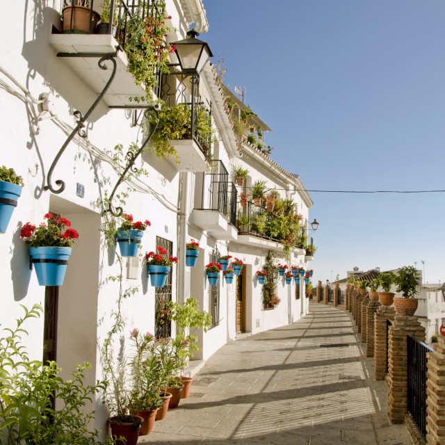 """Walkway with flower pots on the wall in the white village of Mijas"" stock image"