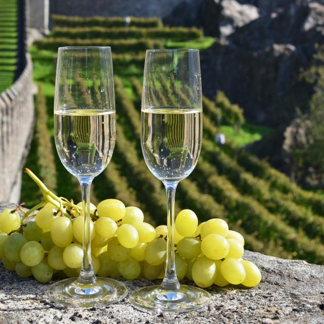 """Pair of champagne glasses. Bellinzona, Switzerland"" stock image"