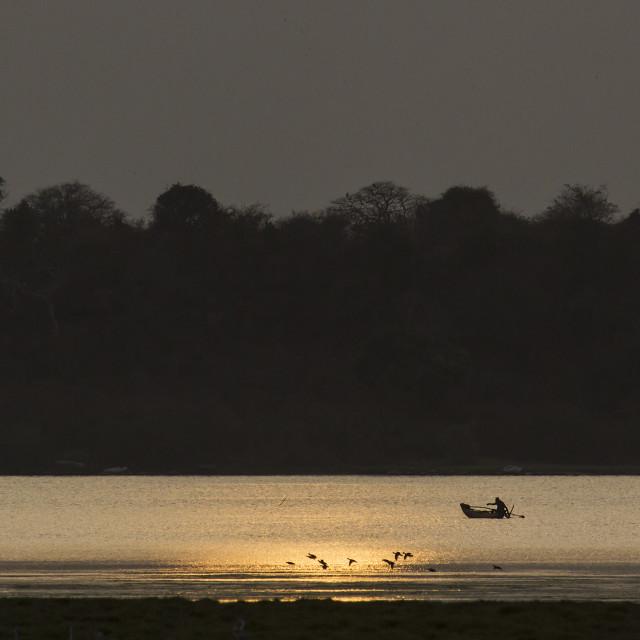 """Fisherman in Arugam bay lagoon"" stock image"