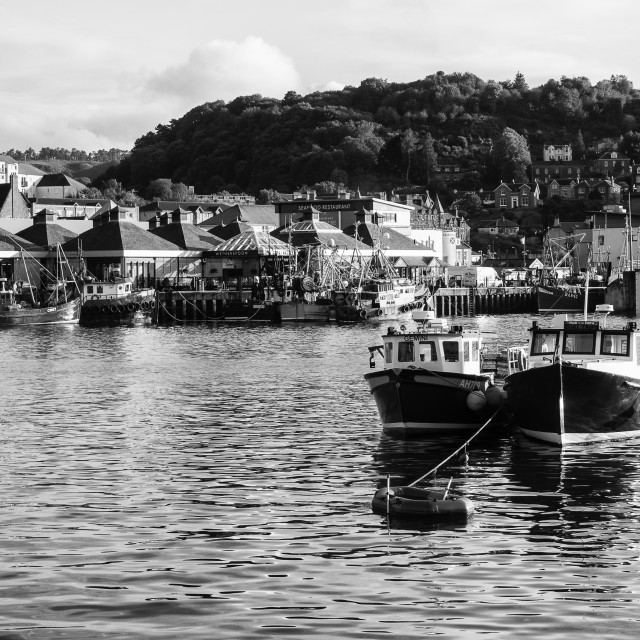 """Oban Harbour, Oban, Argyle, Scotland. 28th August 2015 Monochrom"" stock image"