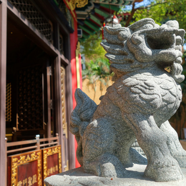 """Classical Chinese lion statue"" stock image"