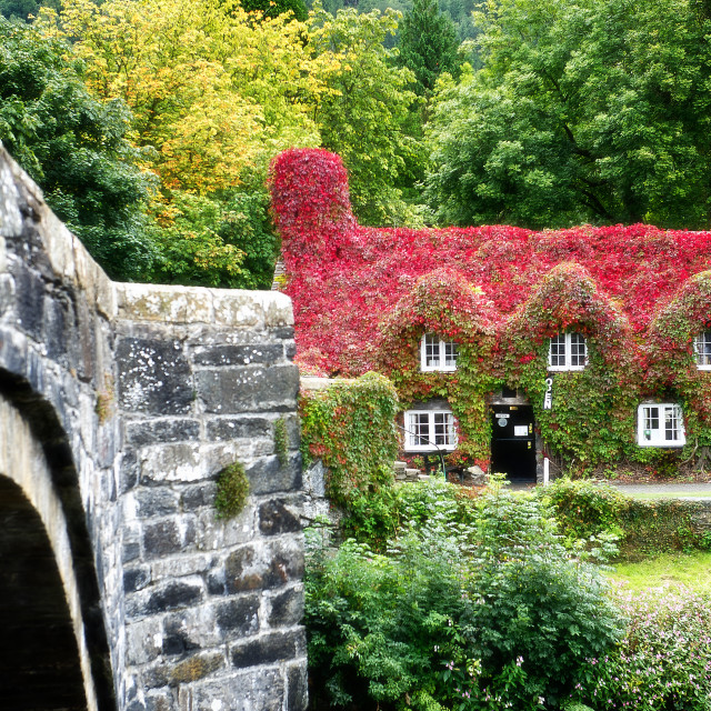 """Tu Hwnt Ir Bont Tearoom, Llanrwst, North Wales"" stock image"