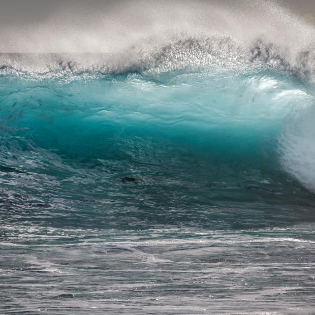 """Hawaii Ocean wave"" stock image"