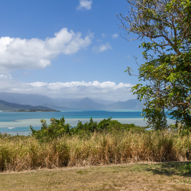 """""""View of Kaneohe Bay"""" stock image"""