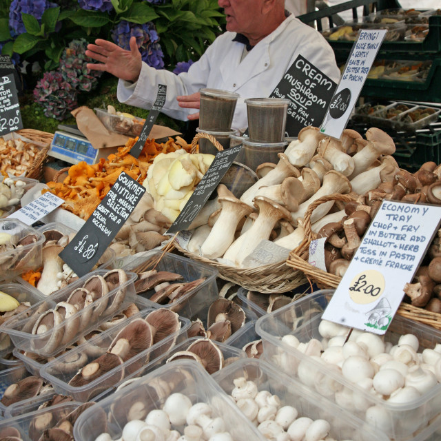 """Man on a stall selling mushrooms at Chatsworth Country Fair"" stock image"