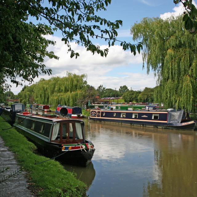 """""""Canal boats near to Anderton marina"""" stock image"""
