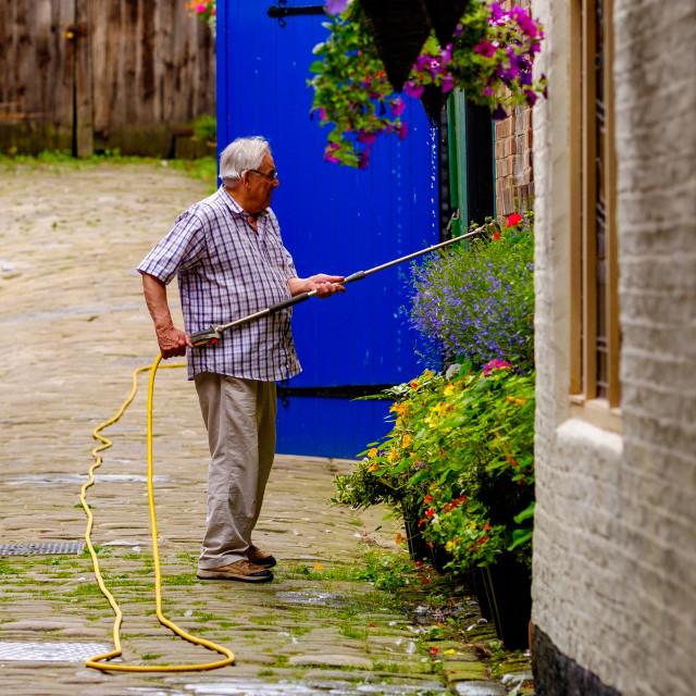 """Man watering hanging baskets upright"" stock image"