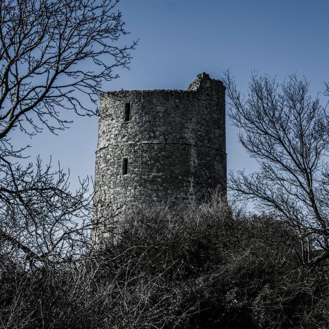 """Erie castle"" stock image"