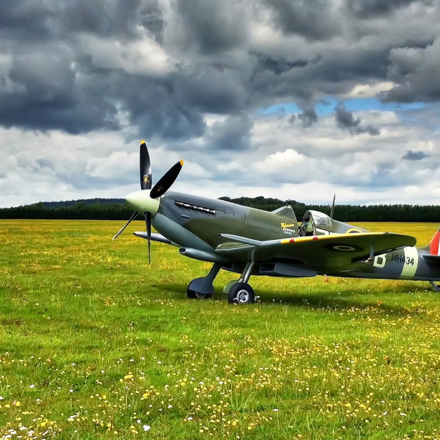 """Spitfire in a field"" stock image"