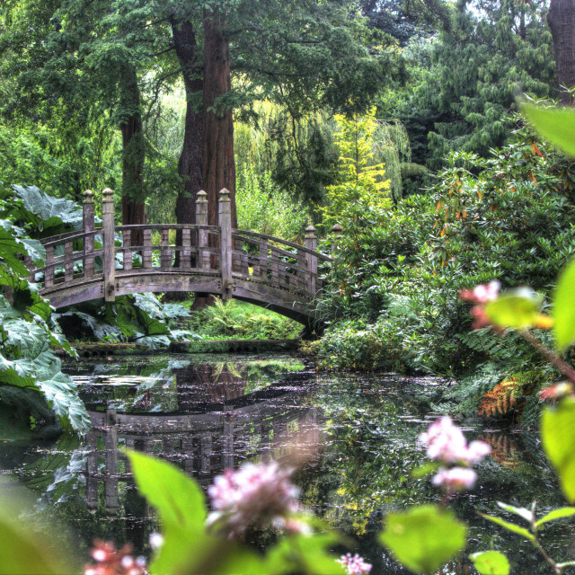 """Magical English garden"" stock image"