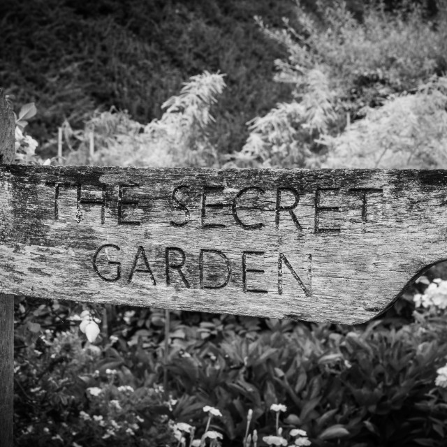"""The Secret Garden"" stock image"
