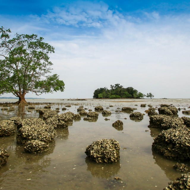 """Teluk Gong Beach"" stock image"
