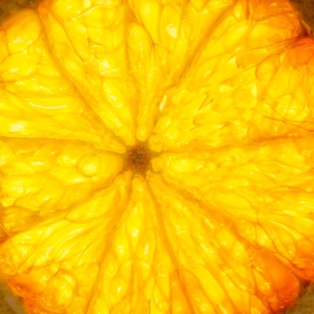 """Backlit Orange Slice"" stock image"