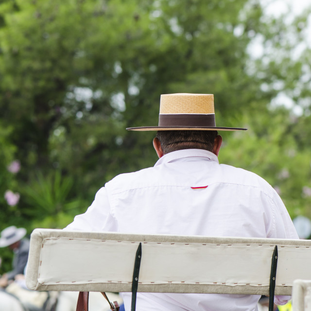 """""""Man with andalusian hat on horse carriage"""" stock image"""