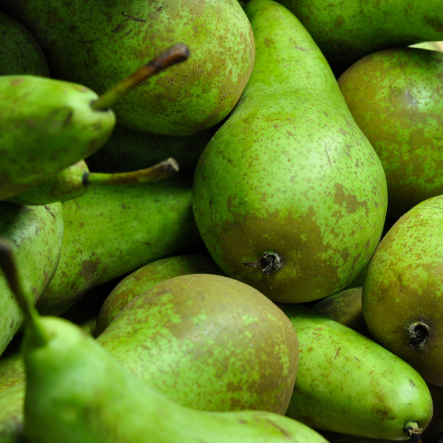 """Pears"" stock image"
