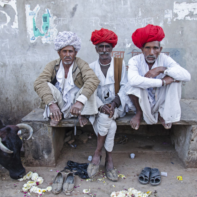 """PUSHKAR MEN"" stock image"