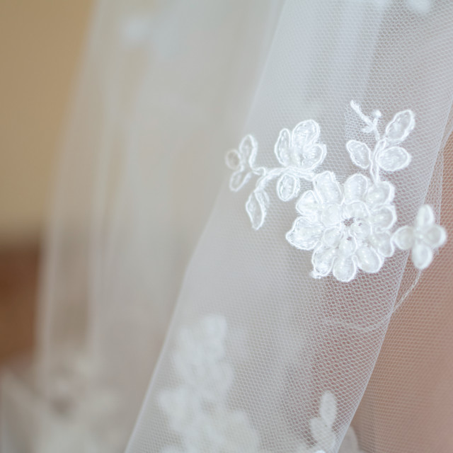 """Lace of Bridal Veil Closeup"" stock image"