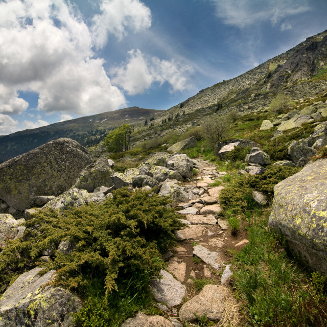 """""""Path in the mountains"""" stock image"""