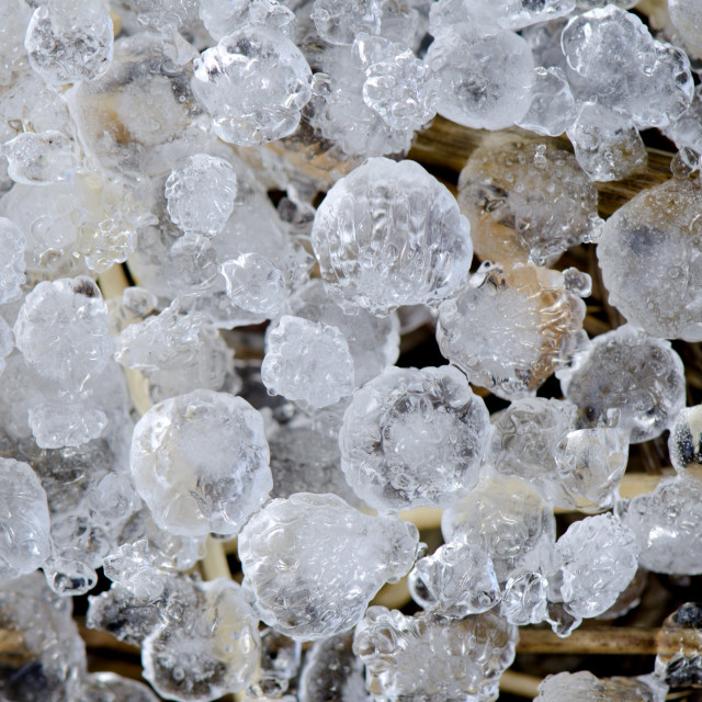 """""""Hailstones"""" stock image"""