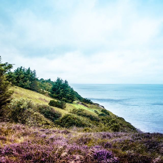 """Nature landscape"" stock image"