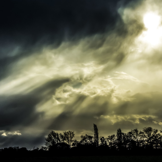 """""""After the storm"""" stock image"""