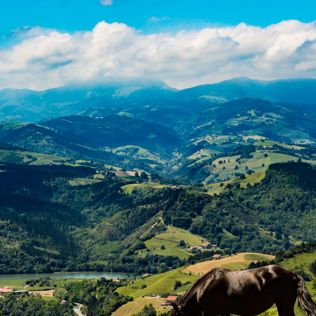 """Verdant Northern Spain"" stock image"