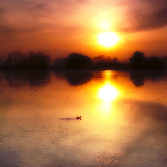 """Towards the sunset"" stock image"
