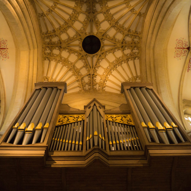 """Organ and ceiling, Wells Cathedral"" stock image"
