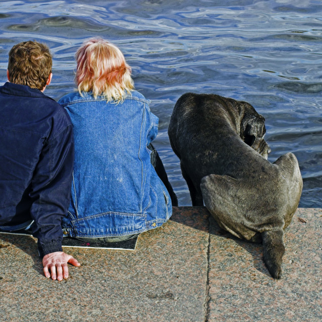 """""""couple and a dog"""" stock image"""