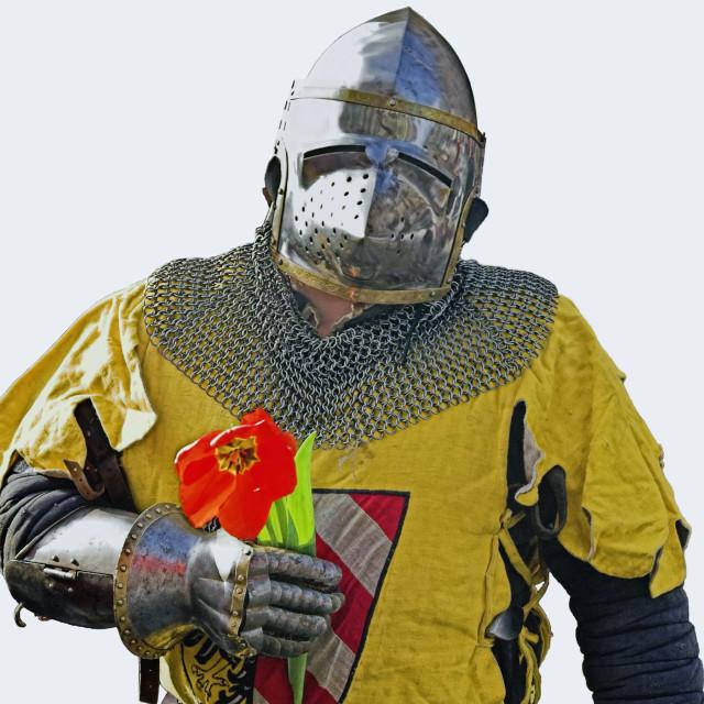 """Knight"" stock image"