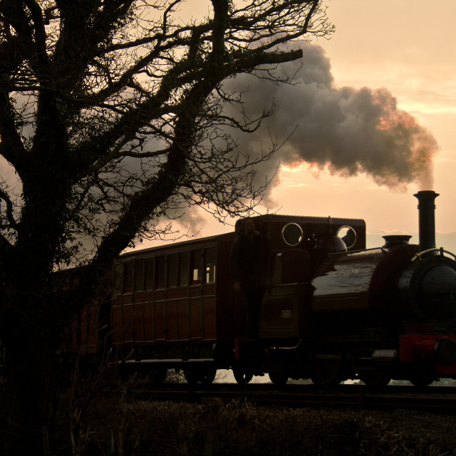 """'Talyllyn' And The Tree"" stock image"