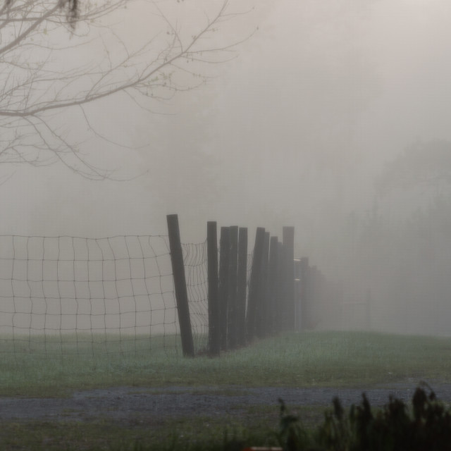 """Foggy farm morning"" stock image"