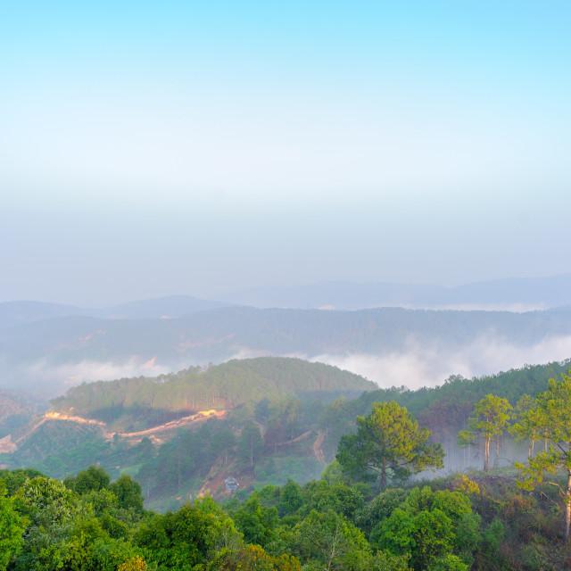 """""""A foggy morning at Dalat City, Lam Dong Province, Vietnam"""" stock image"""