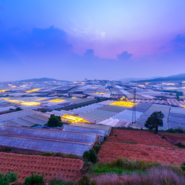 """Beautiful view from a hill - farm of greenhouses to grow flowers in Da Lat in sunset"" stock image"