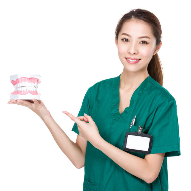 """""""Dentist show with denture"""" stock image"""