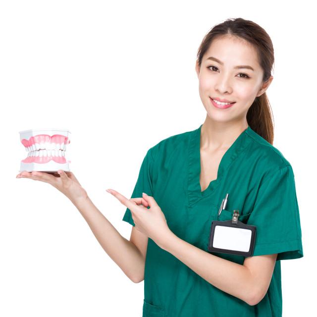 """Female Dentist with denture"" stock image"